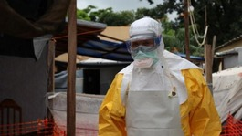 Ebola death toll rises to more than 500 as virus spreads