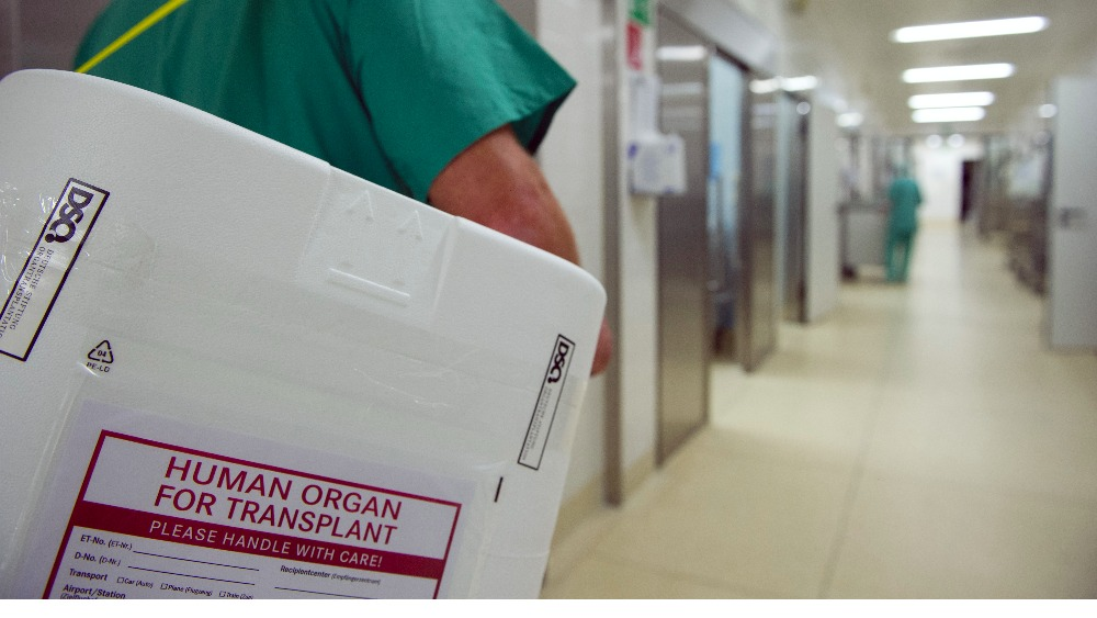 why you should become an organ Wondering why you should be an organ donor one donor can save up to 8 lives get more statistics here.
