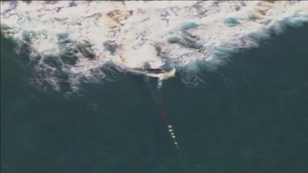 Whale_rescue
