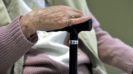Many Alzheimer's cases 'avoidable'