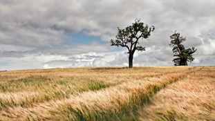 East Anglia has some of the most breathtaking countryside in the UK.