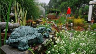 Care home gardens