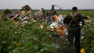 The wreckage of Malaysia Airlines flight MH17 is seen in eastern Ukraine.