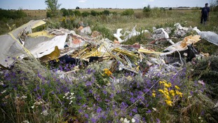Part of the MH17 crash site in Ukraine.