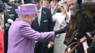 Queen Elizabeth II pats her horse Estimate after it won the Gold Cup in 2013.