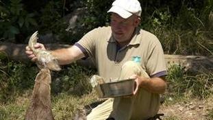 John gives his otters fishy treats