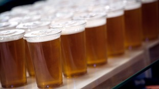 Pints of Lager are lined up waiting to be served
