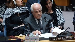 UN ambassador Dr Riyad Mansour.