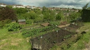 In Plymouth 800 people are waiting for an allotment