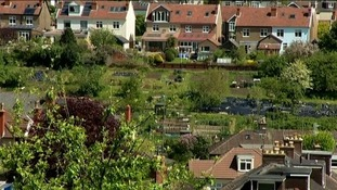 Council urge allotments to be registered