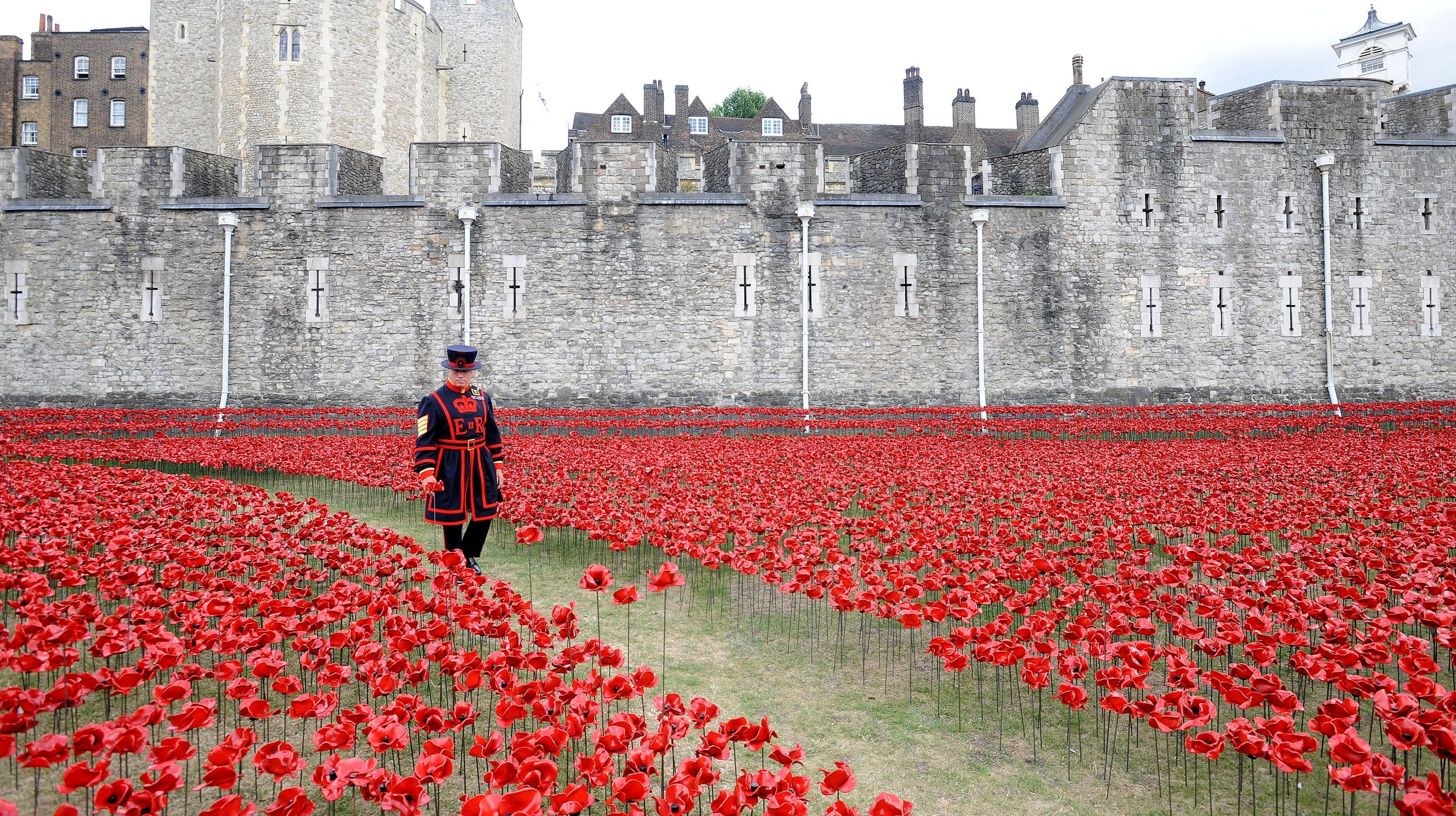 Sea Of Poppies At Tower Of London Honours Fallen Ww1