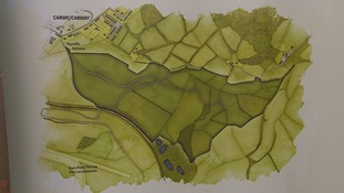 The new woodland could be created near Ffos Las.