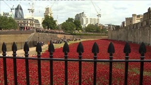 The grounds of the Tower were covered in poppies to mark the centenary of World War I.