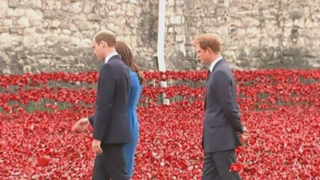 Royals_at_poppy_display