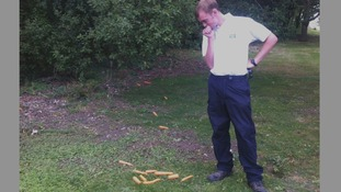 A ranger spots one of the piles of carrots