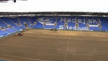 Reading pitch