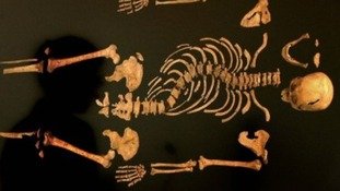 Richard III's remains