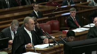 Gerrie Nel asked the judge to reject the Olympic and Paralympic track star's defence as