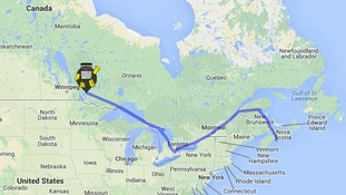 hitchBOT's trip so far.