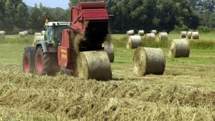 Rural Crime in Devon & Cornwall up by 35% in 2013