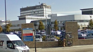 The fox fell from the ceiling of the aediatric ward in North Middlesex University Hospital in Edmonton.