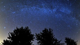 Stargazers attempt to catch glimpse of Perseid meteor shower