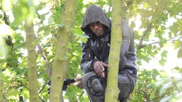 Train line shut as suspected burglar hides in tree