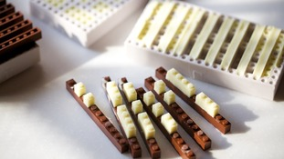 Chocolate Lego bricks.