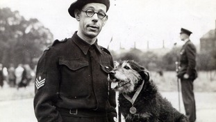 Rip the dog with his handler, Mr King.
