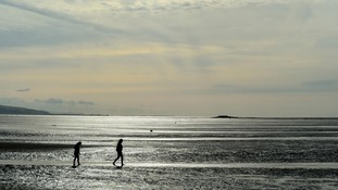 silhouettes of people walking on the beach