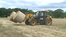 Oscar Smith is working on a farm in Norfolk ahead of a part-time five-year degree course at Easton and Otley College.