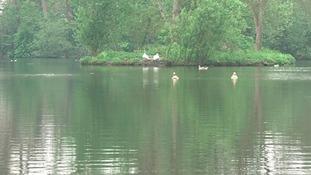 Heacham Park near Hunstanton.
