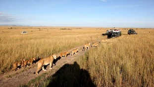 Visitors to Kenya, popular for its safaris through the Masai Mara, have cancelled despite the country being thousands of miles from the Ebola outbreak