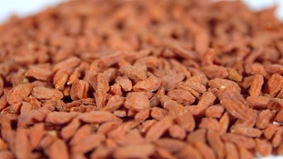 pile of goji berries