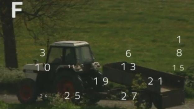 P-FARMING_AUGUST_ITV_Border