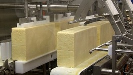 Somerset cheese maker hit hard by Russian ban