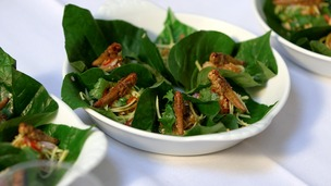 insect salad