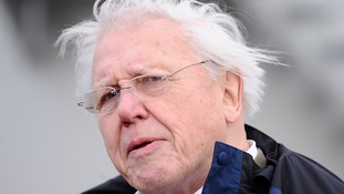 Sir David Attenborough warned of the 'escalating erosion of wildlife'.