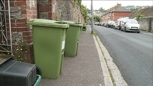 Green bins might soon cost Teignbridge residents £35