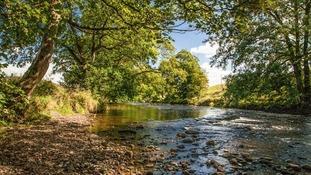 River Wenning RICHARD BAYLEY