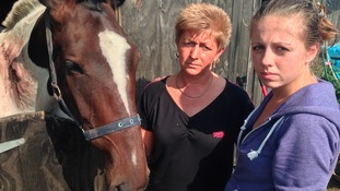 Tommy the horse with owners Alison Cook and Megan James
