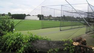 The fallen tree at Spencer Cricket Club in Earlsfield, London