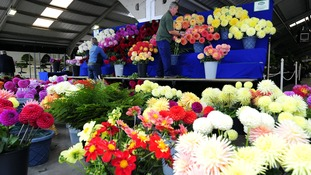 Exhibitors prepare their stands for the Harrogate Autumn Flower Show