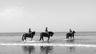 32 horses on exercise at Woolacombe Sands