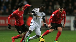 Swansea City's Marvin Emnes