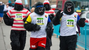 The London Great Gorilla Run