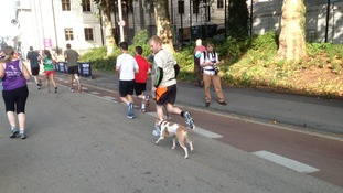 One runner was joined by his dog