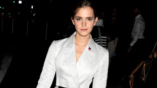Emma Watson had spoken to the UN about gender equality.
