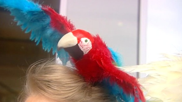 A plastic parrot hat from Royal Ascot 2011