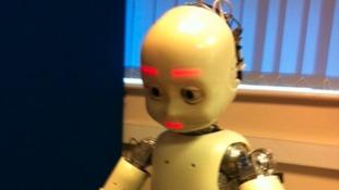 The humanoid robot iCub